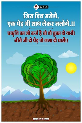 Save Tree Wall Poster